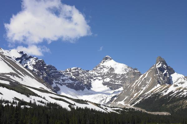 Scenery along the Icefields Parkway